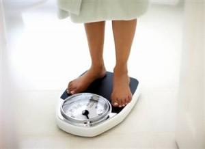 diet plans nutrition